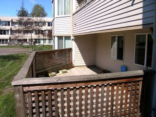 Photo 3: #119 9635 121 Street in Surrey: Condo for sale : MLS®# F2908608