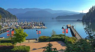 Photo 29: 215 3600 WINDCREST Drive in North Vancouver: Roche Point Condo for sale : MLS®# R2520713