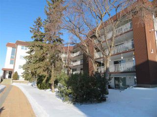 Photo 12: 401 14810 51 Avenue in Edmonton: Zone 14 Condo for sale : MLS®# E4185546