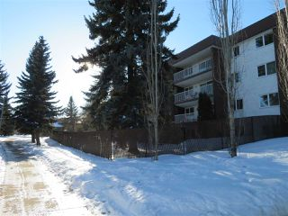 Photo 5: 401 14810 51 Avenue in Edmonton: Zone 14 Condo for sale : MLS®# E4185546