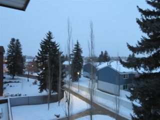 Photo 41: 401 14810 51 Avenue in Edmonton: Zone 14 Condo for sale : MLS®# E4185546