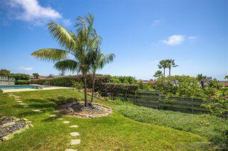 Photo 24: LA JOLLA House for sale : 3 bedrooms : 1455 Cottontail Ln