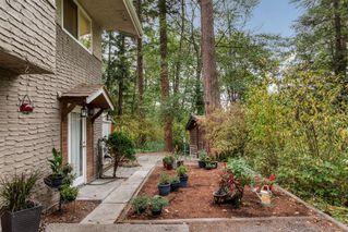 Photo 33: 4353 Northridge Cres in : SW Northridge House for sale (Saanich West)  : MLS®# 856532