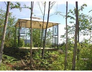 Photo 9: 12750 262ND Street in Maple_Ridge: Websters Corners House for sale (Maple Ridge)  : MLS®# V669099