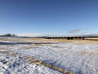 Photo 30: 25404 TWP RD 610: Rural Westlock County House for sale : MLS®# E4191854