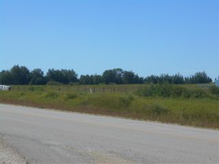Photo 4: 7313B Twp Rd 490: Rural Brazeau County Land Commercial for sale : MLS®# E4209168