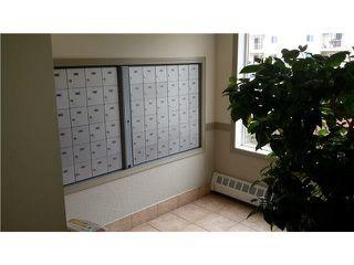 Photo 5: 408 4703 43 Avenue: Stony Plain Condo for sale : MLS®# E4219909