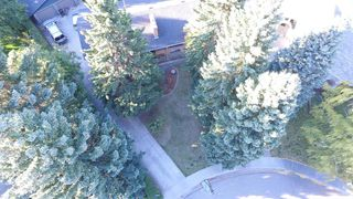 Photo 36: 6714 Leaside Drive SW in Calgary: Lakeview Detached for sale : MLS®# A1058173