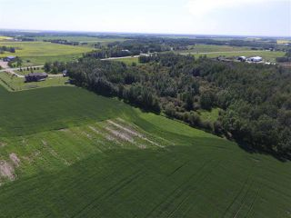Photo 29: 27128 TWP RD 511: Rural Parkland County House for sale : MLS®# E4166977