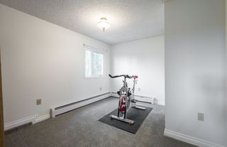 Photo 27: 4204 RAMSAY Road in Edmonton: Zone 14 House for sale : MLS®# E4169973