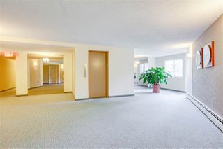 Photo 18: 108 10220 RYAN Road in Richmond: South Arm Condo for sale : MLS®# R2409053