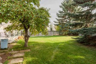 Photo 28: 126 HEALY Road in Edmonton: Zone 14 House for sale : MLS®# E4176590