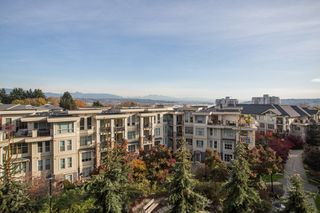 "Photo 14: 303 255 ROSS Drive in New Westminster: Fraserview NW Condo for sale in ""THE GROVE"" : MLS®# R2417529"