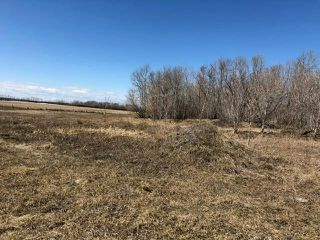 Photo 17: 0 20 Highway in Dauphin: R10 Farm for sale (R30 - Dauphin and Area)  : MLS®# 202008642