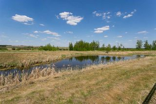 Photo 29: 207 Riverview Way: Rural Sturgeon County House for sale : MLS®# E4198886