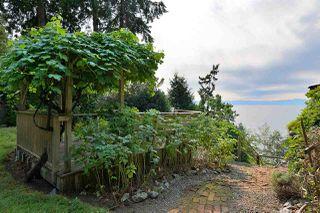 Photo 32: 4957 SUNSHINE COAST HIGHWAY in Sechelt: Sechelt District House for sale (Sunshine Coast)  : MLS®# R2496030