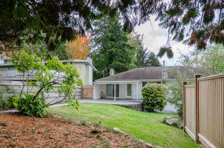 Photo 34: 8225 NELSON Avenue in Burnaby: South Slope House for sale (Burnaby South)  : MLS®# R2511373