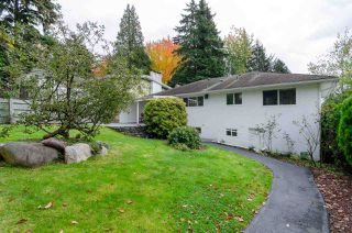 Photo 36: 8225 NELSON Avenue in Burnaby: South Slope House for sale (Burnaby South)  : MLS®# R2511373