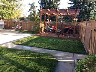 Photo 45: 8404 56 Street in Edmonton: Zone 18 House for sale : MLS®# E4223728