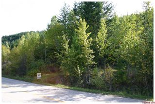 Photo 60: 3517 Eagle Bay Road in Eagle Bay: Waterfront Residential Detached for sale : MLS®# 10043461