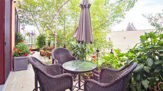 Photo 9: 202 11633 105 Avenue NW in Edmonton: Zone 08 Condo for sale : MLS®# E4166991