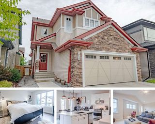 Main Photo: 1942 AINSLIE Link in Edmonton: Zone 56 House for sale : MLS®# E4168960