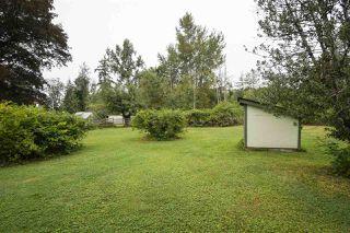 Photo 18: 25813 96 Avenue in Maple Ridge: Thornhill MR House for sale : MLS®# R2397943