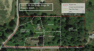 Photo 20: 25813 96 Avenue in Maple Ridge: Thornhill MR House for sale : MLS®# R2397943