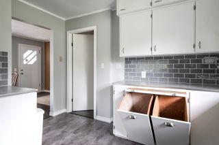 Photo 6: 25813 96 Avenue in Maple Ridge: Thornhill MR House for sale : MLS®# R2397943