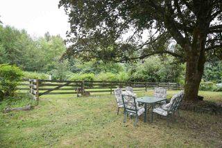 Photo 17: 25813 96 Avenue in Maple Ridge: Thornhill MR House for sale : MLS®# R2397943