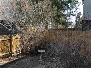 Photo 34: 68 BELMEAD Gardens in Edmonton: Zone 20 Townhouse for sale : MLS®# E4181110
