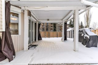 Photo 40: 14704 35 Street in Edmonton: Zone 35 House for sale : MLS®# E4186585
