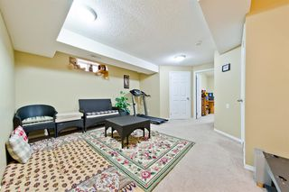 Photo 25: 120 MARTIN CROSSING Manor NE in Calgary: Martindale Detached for sale : MLS®# A1010354