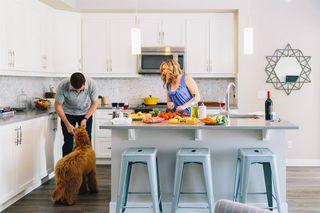 Photo 3: 213 100 Auburn Meadows Manor SE in Calgary: Auburn Bay Apartment for sale : MLS®# A1021390