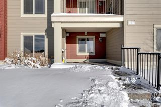 Photo 27: 115 15 Saddlestone Way in Calgary: Saddle Ridge Apartment for sale : MLS®# A1053856