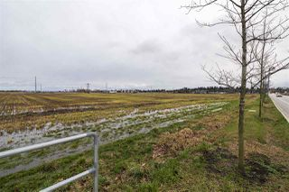 Photo 8: 2150 52 Street in Delta: Tsawwassen North Land Commercial for sale (Tsawwassen)  : MLS®# C8035948