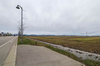 Photo 11: 2150 52 Street in Delta: Tsawwassen North Land Commercial for sale (Tsawwassen)  : MLS®# C8035948