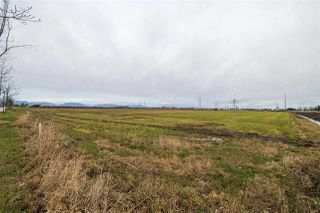 Photo 12: 2150 52 Street in Delta: Tsawwassen North Land Commercial for sale (Tsawwassen)  : MLS®# C8035948