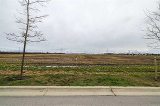 Photo 5: 2150 52 Street in Delta: Tsawwassen North Land Commercial for sale (Tsawwassen)  : MLS®# C8035948