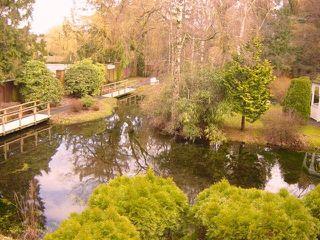"""Photo 5: 110 7001 Eden Drive in Chilliwack: Sardis West Vedder Rd Condo for sale in """"EDENBANK"""" (Sardis)  : MLS®# H1100720"""