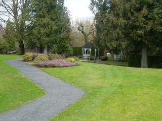 """Photo 6: 110 7001 Eden Drive in Chilliwack: Sardis West Vedder Rd Condo for sale in """"EDENBANK"""" (Sardis)  : MLS®# H1100720"""