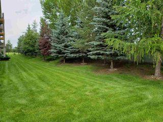 Photo 19: 201 278 SUDER GREENS Drive in Edmonton: Zone 58 Condo for sale : MLS®# E4165256