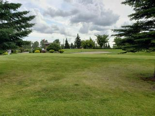 Photo 7: 201 278 SUDER GREENS Drive in Edmonton: Zone 58 Condo for sale : MLS®# E4165256