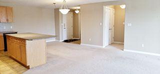 Photo 23: 201 278 SUDER GREENS Drive in Edmonton: Zone 58 Condo for sale : MLS®# E4165256