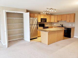 Photo 4: 201 278 SUDER GREENS Drive in Edmonton: Zone 58 Condo for sale : MLS®# E4165256