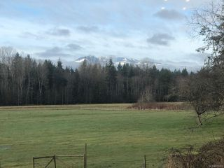 Photo 14: 6235 N Island Hwy in COURTENAY: CV Courtenay North House for sale (Comox Valley)  : MLS®# 833224