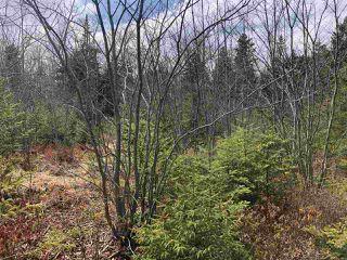 Photo 2: Lot 175 Stonewick Cross in Hammonds Plains: 21-Kingswood, Haliburton Hills, Hammonds Pl. Vacant Land for sale (Halifax-Dartmouth)  : MLS®# 202006620