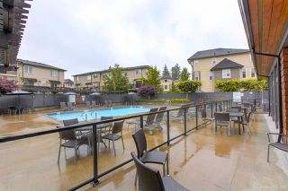"Photo 34: 68 7938 209 Street in Langley: Willoughby Heights Townhouse for sale in ""RED MAPLE PARK"" : MLS®# R2470287"