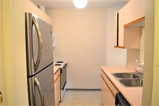 "Photo 3: 438 22661 LOUGHEED Highway in Maple Ridge: East Central Condo for sale in ""GOLDEN EARS GATE"" : MLS®# R2522711"