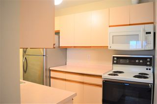 "Photo 5: 438 22661 LOUGHEED Highway in Maple Ridge: East Central Condo for sale in ""GOLDEN EARS GATE"" : MLS®# R2522711"